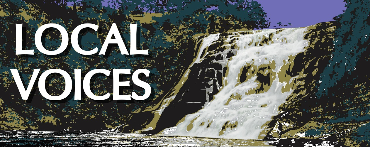 Local Voices banner image showing picture of Ithaca Falls
